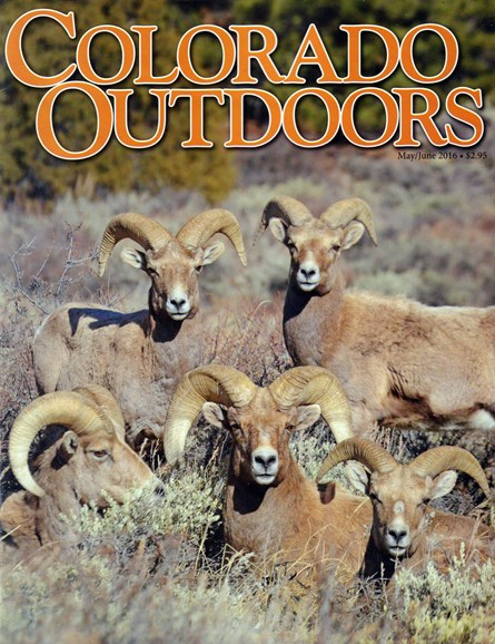 Colorado Outdoors Cover - 5/1/2016
