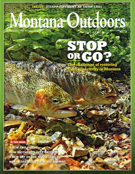 Montana Outdoors Cover - 5/1/2016