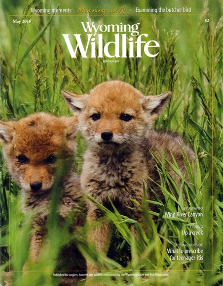 Wyoming Wildlife Cover - 5/1/2016
