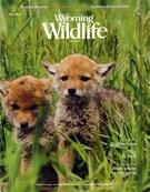 Wyoming Wildlife Magazine 5/1/2016