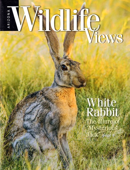 Arizona Wildlife Views Cover - 5/1/2016