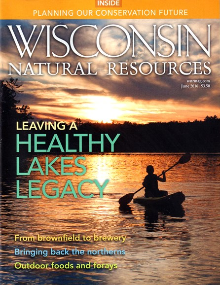 Wisconsin Natural Resources Cover - 6/1/2016