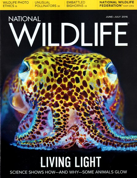 National Wildlife Cover - 6/1/2016