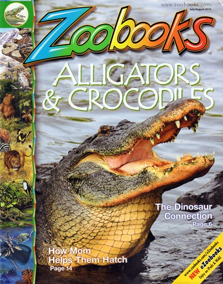 Zoobooks Cover - 6/1/2016