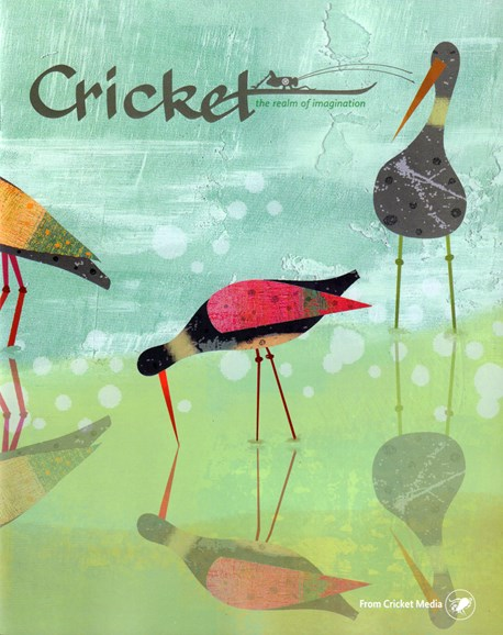 Cricket Cover - 7/1/2016