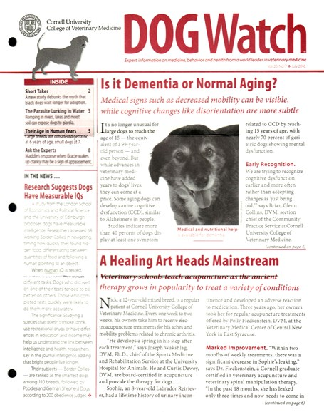 Dogwatch Cover - 7/1/2016