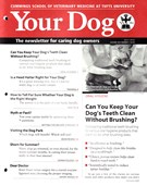 Your Dog 7/1/2016