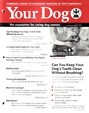 Your Dog | 7/2016 Cover