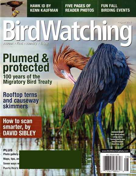 Bird Watching Cover - 8/1/2016