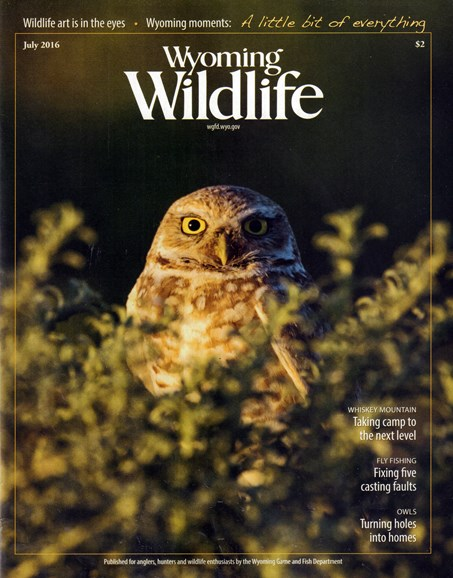 Wyoming Wildlife Cover - 7/1/2016