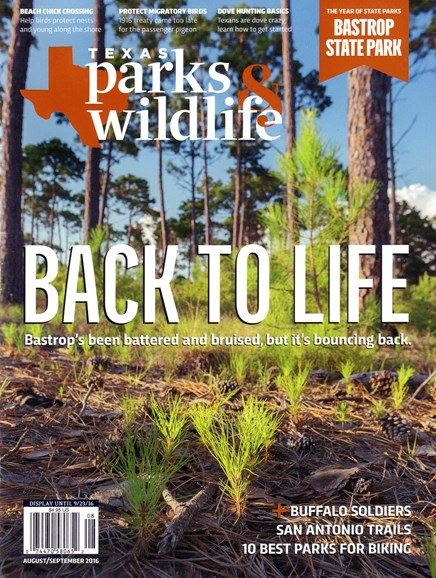 Texas Parks & Wildlife Cover - 8/1/2016