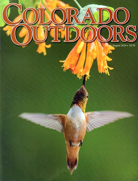 Colorado Outdoors Cover - 7/1/2016