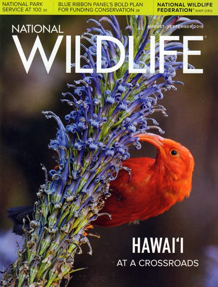 National Wildlife Cover - 8/1/2016