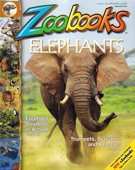 Zoobooks Cover - 8/1/2016