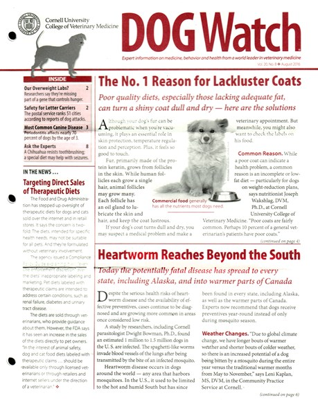 Dogwatch Cover - 8/1/2016