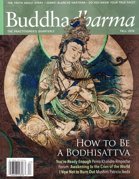 BUDDHADHARMA: THE PRACTIONER'S QUARTERLY Cover - 9/1/2016