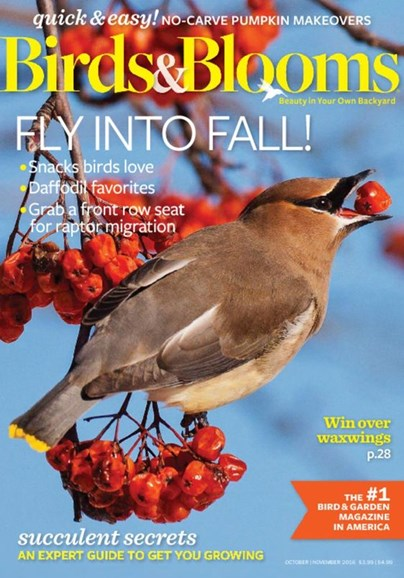 Birds & Blooms Cover - 10/1/2016