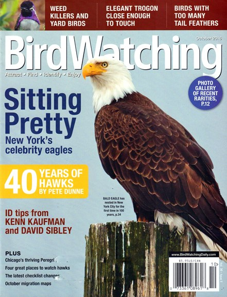 Bird Watching Cover - 10/1/2016