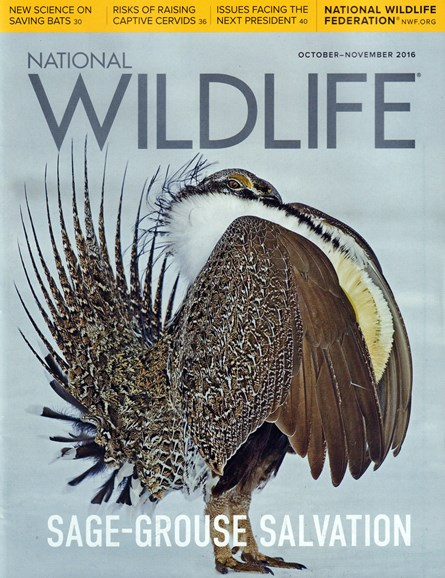 National Wildlife Cover - 10/1/2016