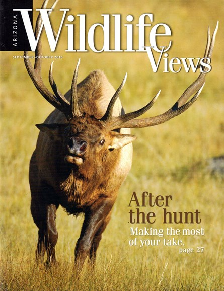 Arizona Wildlife Views Cover - 9/1/2016