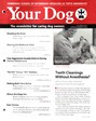 Your Dog | 10/2016 Cover
