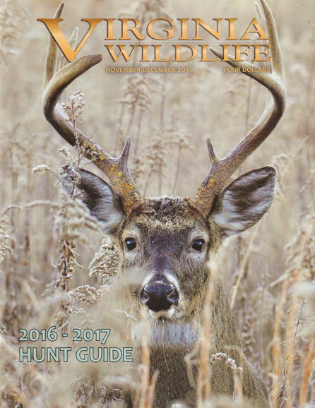 Virginia Wildlife Cover - 11/1/2016
