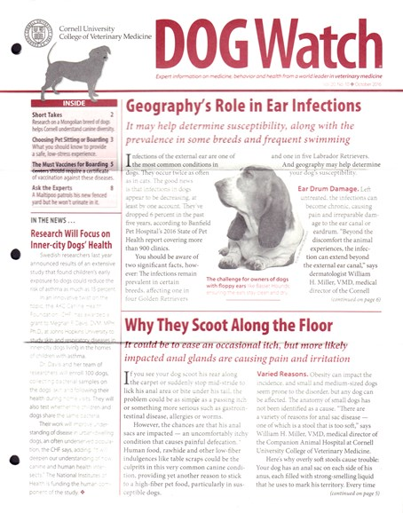Dogwatch Cover - 10/1/2016