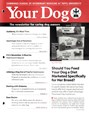 Your Dog | 11/2016 Cover