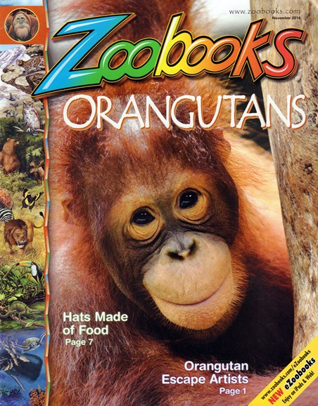 Zoobooks Cover - 11/1/2016