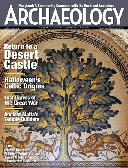 Archaeology Cover - 11/1/2016