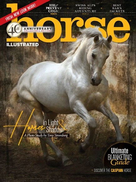 Horse Illustrated Cover - 11/1/2016