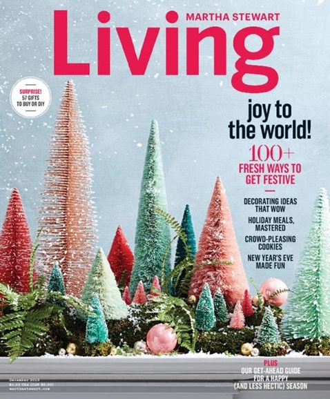 Martha Stewart Living Cover - 12/1/2016