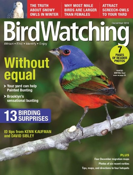 Bird Watching Cover - 12/1/2016