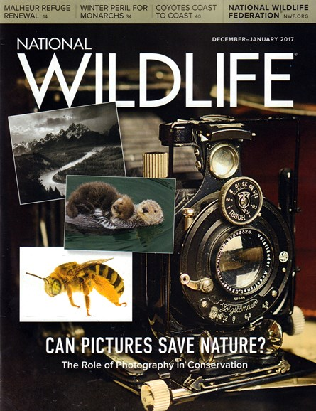 National Wildlife Cover - 12/1/2016