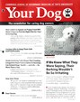 Your Dog | 12/2016 Cover