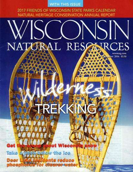 Wisconsin Natural Resources Cover - 12/1/2016