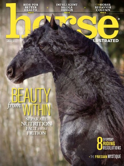 Horse Illustrated Cover - 1/1/2017