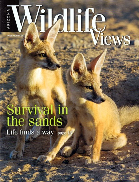 Arizona Wildlife Views Cover - 1/1/2017