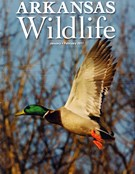 Arkansas Wildlife Magazine 1/1/2017
