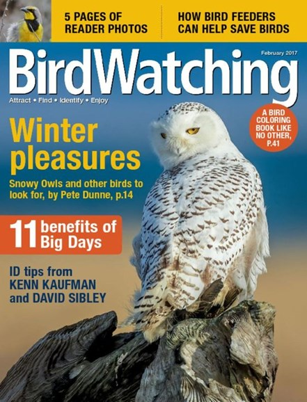 Bird Watching Cover - 2/1/2017