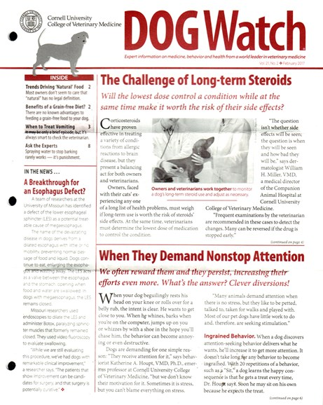 Dogwatch Cover - 2/1/2017