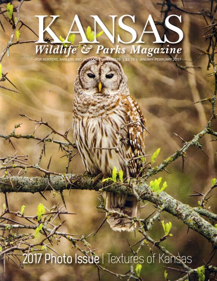 Kansas Wildlife & Parks Cover - 1/1/2017