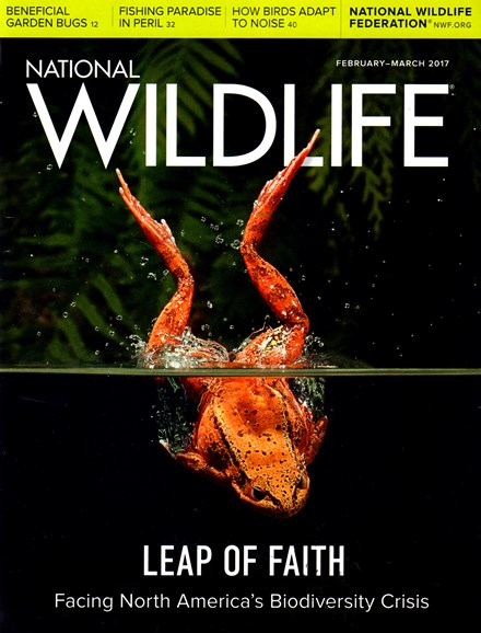 National Wildlife Cover - 2/1/2017