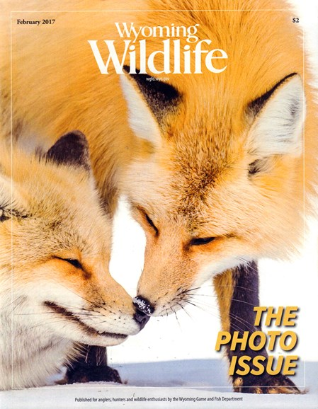 Wyoming Wildlife Cover - 2/1/2017