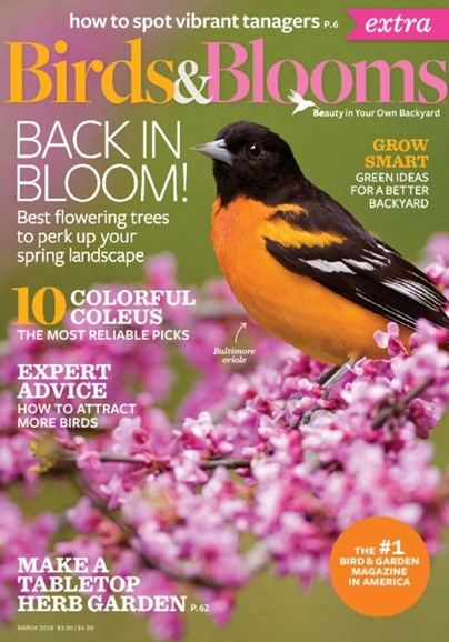Birds & Blooms Extra Cover - 3/1/2016