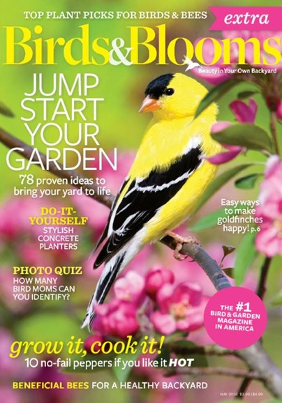Birds & Blooms Extra Cover - 5/1/2016