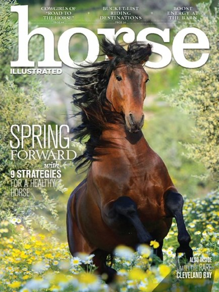 Horse Illustrated Cover - 3/1/2017
