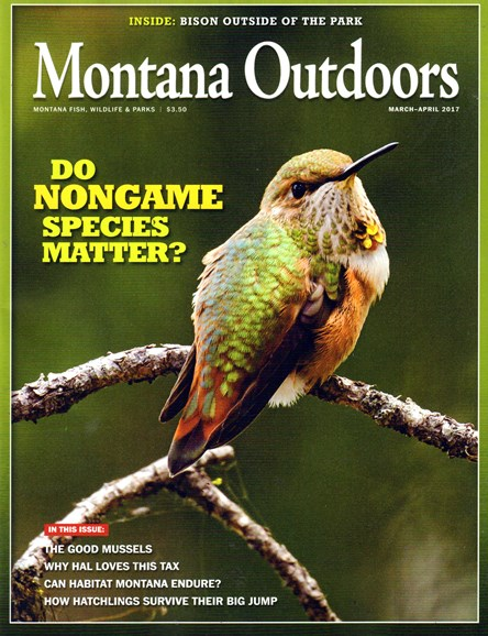 Montana Outdoors Cover - 3/1/2017
