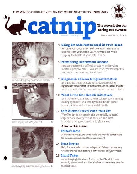 Catnip Cover - 3/1/2017