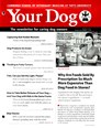 Your Dog | 3/2017 Cover